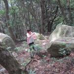 山王山 001