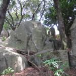 山王山 004